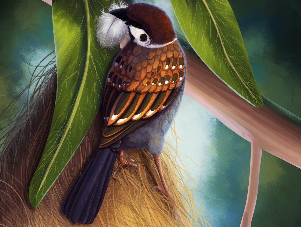 Sparrowcm